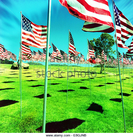 USA, California, Los Angeles, Pepperdine University, American flags on green meadow against blue sky - Stock-Bilder
