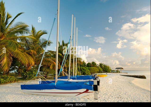 Hobby Car, catamarans, sail boats, side by side, on the beach, palm trees, Maldive island, South Male Atoll, Maldives, - Stock Image