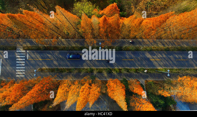Yangzhou. 7th Dec, 2016. Photo taken on Dec. 7, 2016 shows the autumn scenery by the Slender West Lake in Yangzhou, - Stock Image