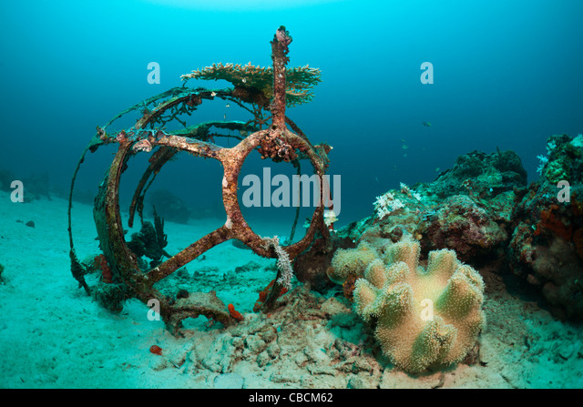 Aeroplane Wreckage at Ahe Housreef, Cenderawasih Bay, West Papua, Indonesia - Stock Image