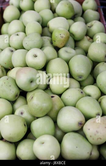 Etna heritage apples named 'Gelato Cola' from Zafferana Etnea,Sicily,Italy,Europe - Stock Image