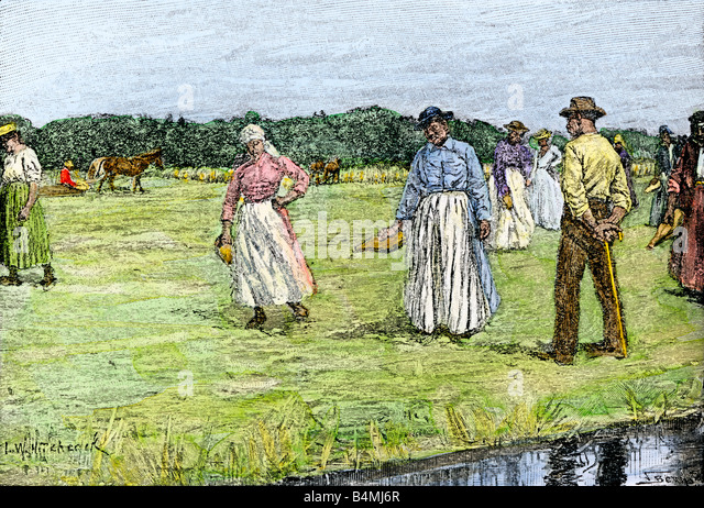 Planting rice on a North Carolina plantation 1800s - Stock Image