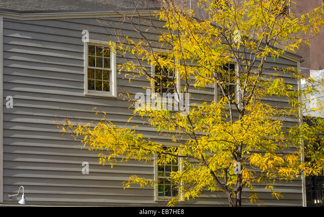 Early wooden building in Lower Manhattan in New York City and bright yellow fall leaves on a young tree Stock Photo