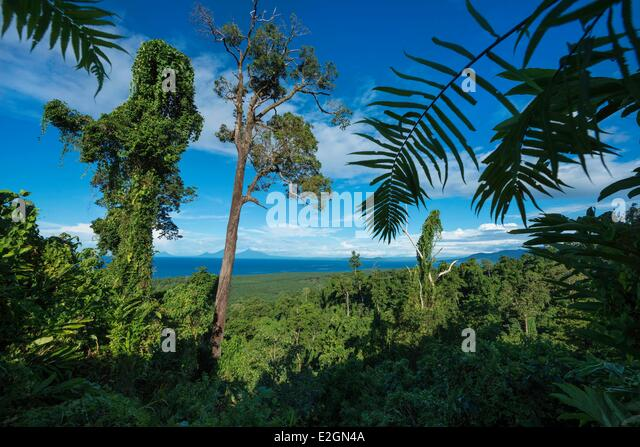 Papua New Guinea New Britain island West New Britain province Talasea district Kimbe area - Stock Image