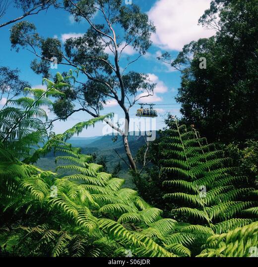 Blue Mountains, Australia - Stock Image
