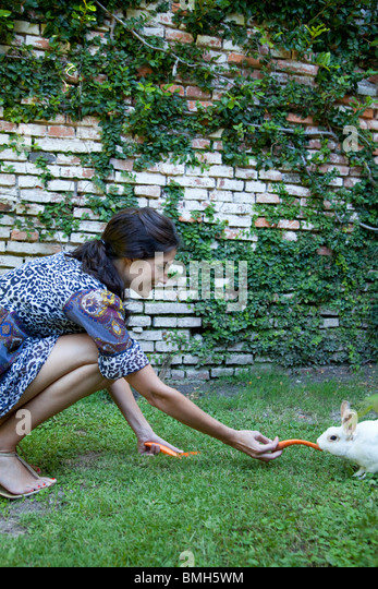 Woman feeding carrots to a rabbit - Stock Image