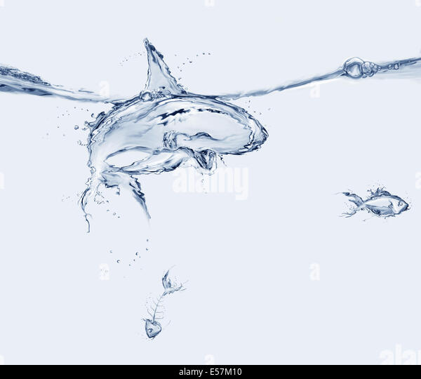 A shark made of water ate a fish and left the fishbone. - Stock Image
