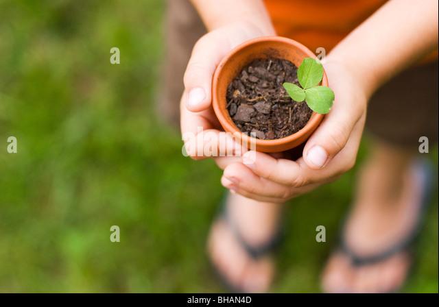 boy holding potted plant - Stock-Bilder
