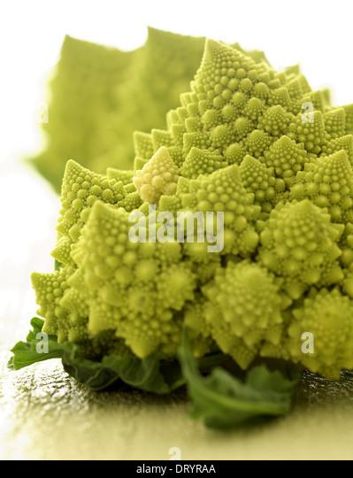Still life of three romanesco cauliflower or broccoli heads. - Stock Image