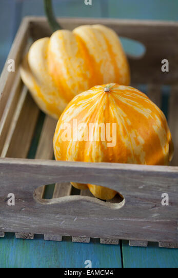 Festival Squashes in Wooden Box - Stock Image