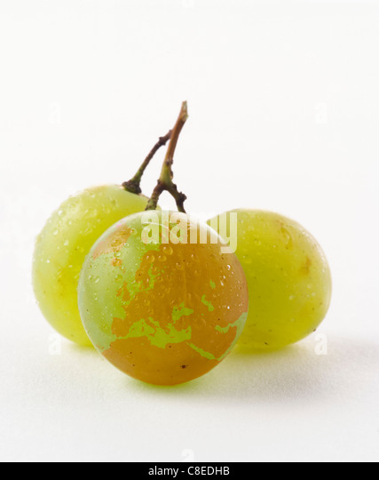 European continent drawn on a white grape - Stock Image