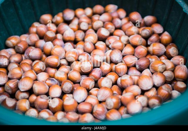 Sale of Hazelnut in bulk - Stock Image