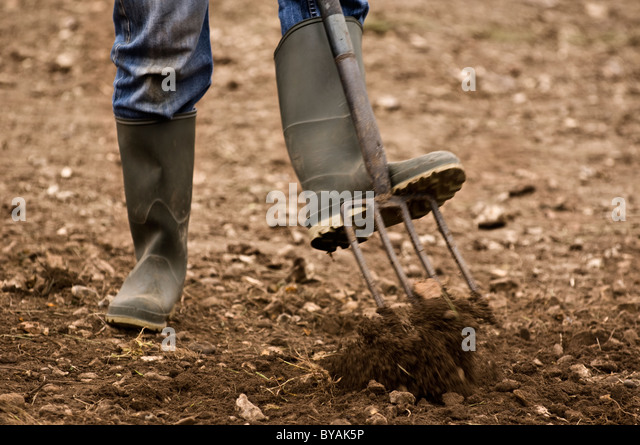 forking over the earth - Stock Image