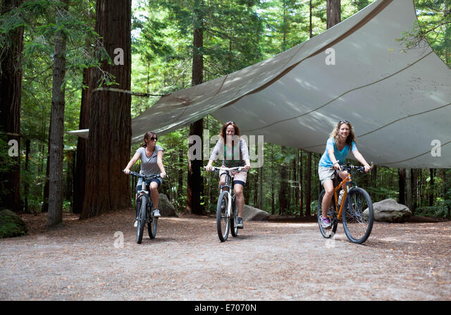 Three women mountain bikers cycling through forest - Stock Image
