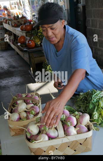 Nashville Tennessee Nashville Farmers' Market agriculture locally grown produce root vegetable fresh turnip - Stock Image