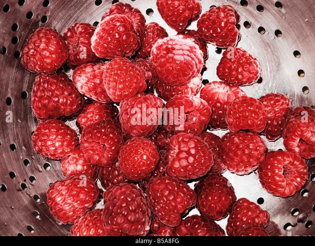 Fresh Raspberries In Colander - Stock Image