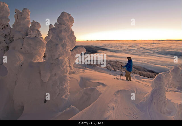 A skier among snow ghosts chooses his route in a beautiful environment before sunrise top Sun Peaks Resort Thompson - Stock Image