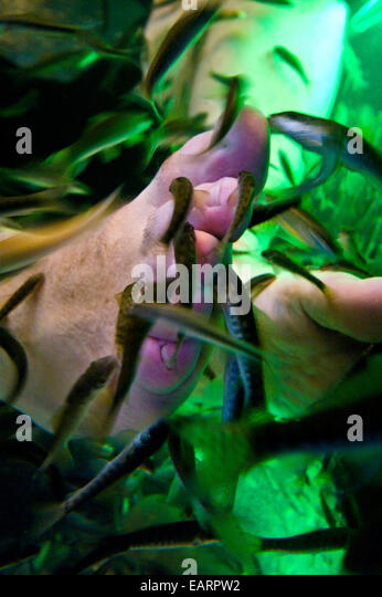 Fish spa stock photos fish spa stock images alamy for Fish eat dead skin spa