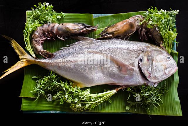 Fresh tuna and tiger prawns - Stock Image
