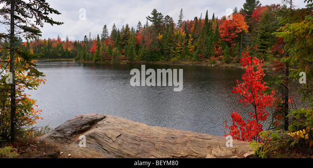 Peck lake panoramic fall nature scenery. Algonquin Provincial Park, Ontario, Canada. - Stock Image