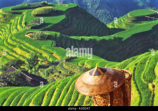 Bamboo hat and basket with terraced rice paddies in the mountain Longsheng Guangxi Province China - Stock Image