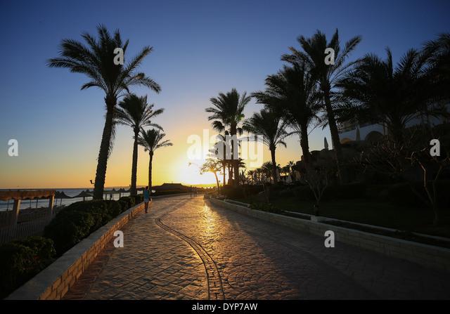Sunset Royal Makadi Bay Hotel Egypt