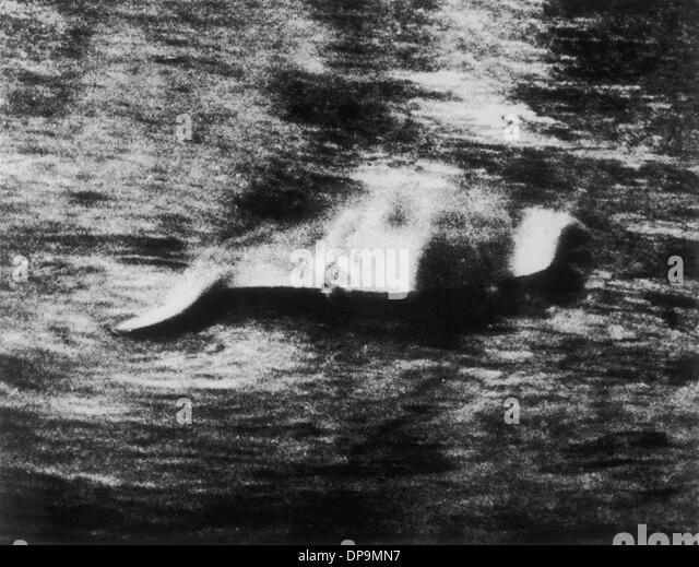 Photograph of the Loch Ness Monster - Stock Image