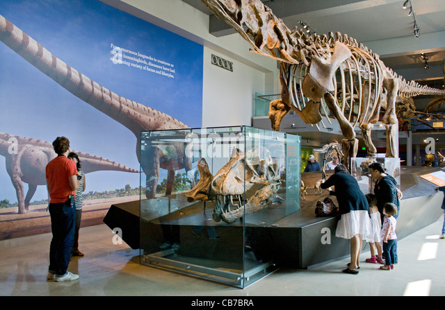 Foyer Museum Usa : Dinosaur park california stock photos