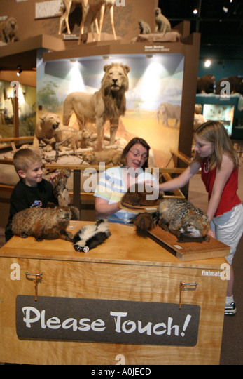 Cleveland Ohio University Circle Museum of Natural History sign Please Touch stuffed animals - Stock Image