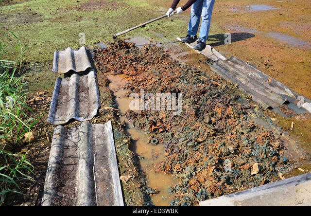 Test to check soil for contaminants