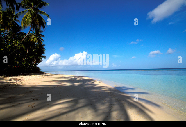 Tropical Sand beach with long palm tree shadows at Pigeon Point, Tobago - Stock Image