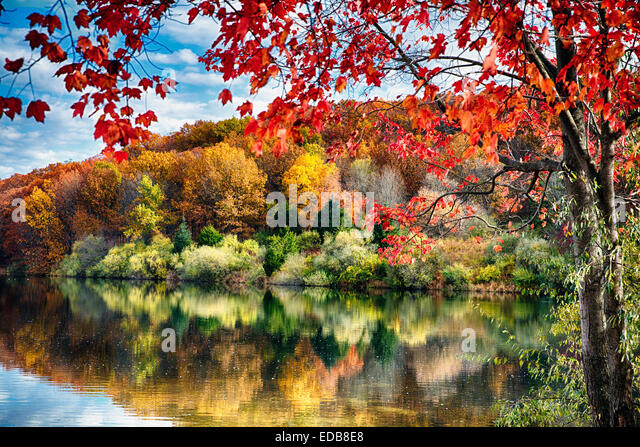 Colorful Trees  Reflections in a Lake, Round Valley Reservoir, Hunterdon County, New Jersey - Stock Image