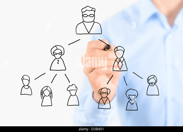 Businessman drawing multi level marketing scheme. Isolated on white. - Stock Image
