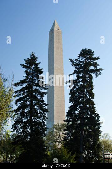 The Washington Monument, Washington D.C., United States of America, North America - Stock Image