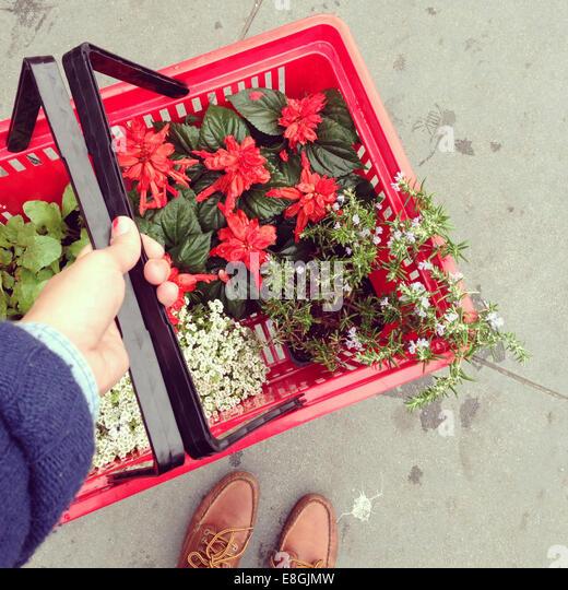 USA, California, San Francisco, Flower shopping - Stock Image