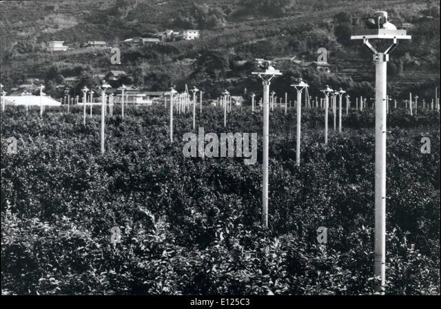 Jan. 01, 1992 - Fans Protect Oranges From Frost: Hundreds of electric fans mounted on 6-foot poles have been installed - Stock Image