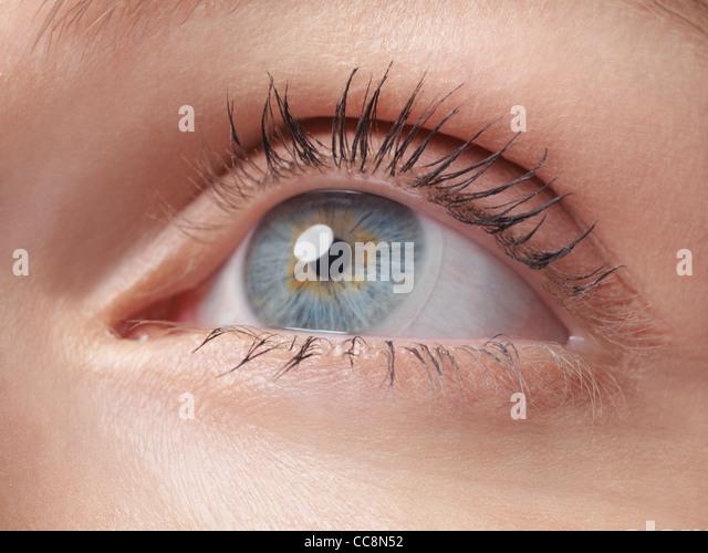 Closeup of a woman's blue eye wearing contact lens - Stock Image