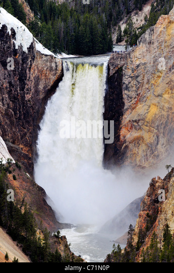 Lower Yellowstone Falls at peak flow in the spring in Yellowstone National Park, Wyoming. - Stock Image