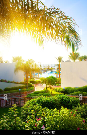Beautiful landscape in the hotel of Egypt - Stock Image