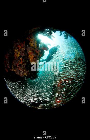 Fisheye Perspective Stock Photos Amp Fisheye Perspective