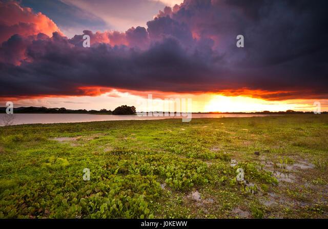 Sunset in the wetlands of Cienaga de las Macanas, Herrera province, Republic of Panama - Stock-Bilder