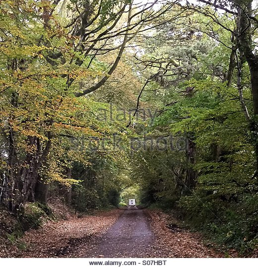 Motor home disappearing down a Devon country lane in the autumn - Stock Image