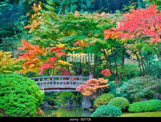 Japanese garden bridge stock photos japanese garden for Japanese garden colors