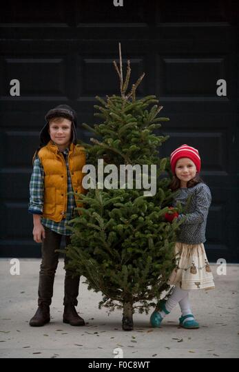 Girl and boy holding christmas tree - Stock Image