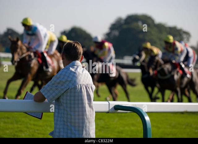 Horse racing Punter watching horse racing UK - Stock Image