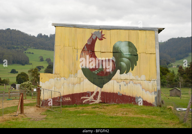Rooster painted on hay shed at Wings Wildlife Park, Tasmania. - Stock Image