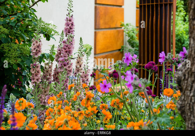 Urban green space uk stock photos urban green space uk stock images alamy - Chelsea flower show gold medal winners ...