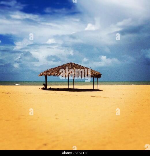 Beach life, Brazil - Stock-Bilder