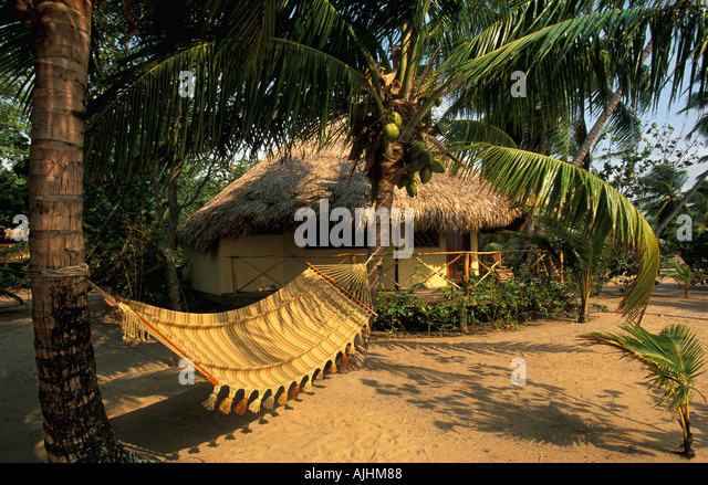 Belize Central America hammock thatch jungle hut beach coconut palm trees - Stock Image