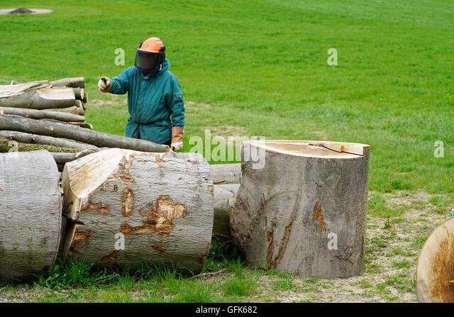 Tree cutting axe stock photos amp tree cutting axe stock images alamy
